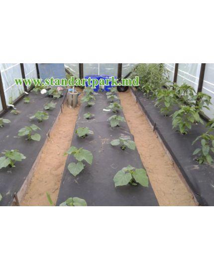Agrotextil SPANBOND negru 50g/m2